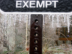 Find out what property exemptions apply to your case?