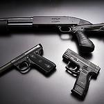 felony gun ownership